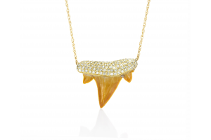 Lucky Shark Tooth Necklace